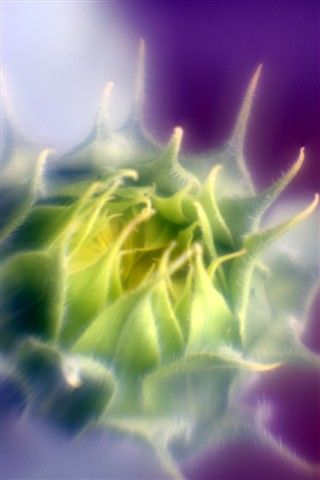 """Photography titled """"HM2"""" by Michael Hewis, Original Art,"""
