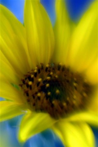 """Photography titled """"HM3"""" by Michael Hewis, Original Art,"""