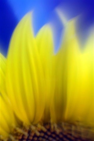 """Photography titled """"HM5"""" by Michael Hewis, Original Art,"""