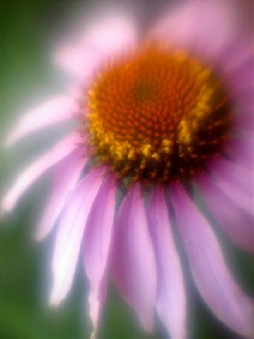 """Photography titled """"HM7"""" by Michael Hewis, Original Art,"""