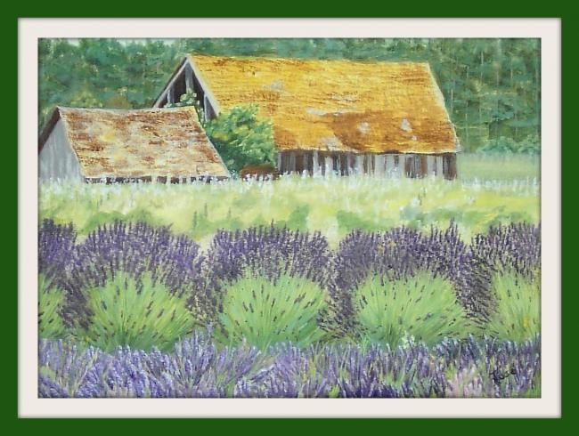 Lavender fields - Painting,  12x9 in ©2012 by jose' -            lavender farm  with barn in Washington