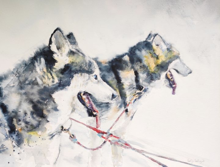 Huskies - Painting,  16x20 in, ©2018 by Ibolya Taligas -                                                                                                                                                                                                                                                                                                                                                                                                                                                                                                                                                                                                                                                                                                                                                                                                                                                                                                              Figurative, figurative-594, Animals, artwork_cat.Dogs, Nature, huskies, animals, wildlife, painting, watercolour, dogs, two, pair, sledging, mushing, snow, finland, arctic, nature