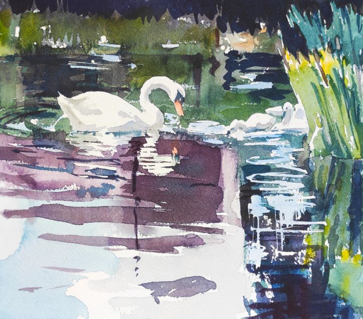 Swan Lake - Painting, ©2013 by Ibolya Taligas -                                                                                                                                                                                                                                                                                                                                                                                                                                                                                                                                                                                                                                                                                                                                                                                                                                                                                                                                                                                                                                                                                                                                          Figurative, figurative-594, Animals, artwork_cat.Birds, Nature, Water, swan, lake, reflection, water, looking, vanity, beauty, nature, swimming, white, bird, spring, watercolour, painting, fauna, wildlife, wild, feathers