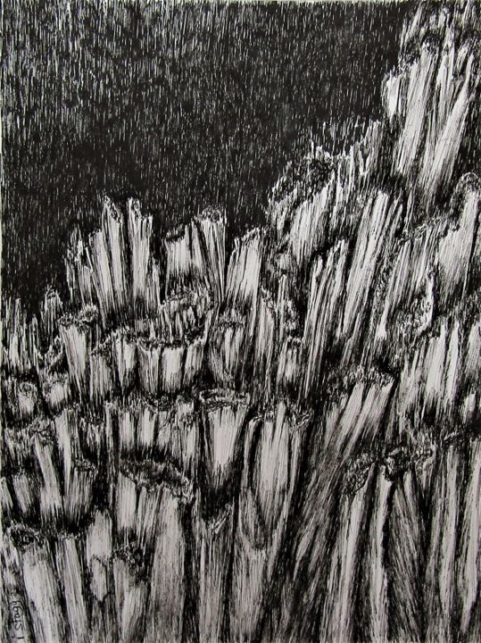 Mouvement de brisure - Drawing,  12.6x9.5 in, ©2018 by Isabelle Stagg -                                                                                                                                                                                                                                                                      Figurative, figurative-594, Black and White, Nature, ink drawing black and white