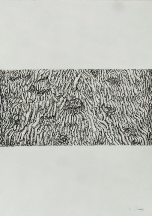Code temporel 3 - Drawing,  42x30 cm ©2019 by Isabelle Stagg -                                                                                                            Abstract Art, Environmental Art, Realism, Paper, Botanic, Nature, Tree, bark, palm tree, ink drawing, textures, ecorce de palmier, dessin encre