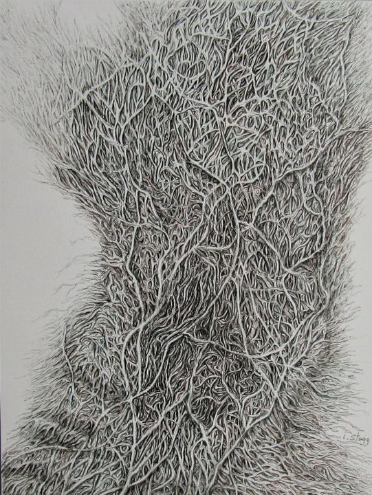WWW - Drawing,  32x24 cm ©2019 by Isabelle Stagg -                                                                                                            Abstract Art, Environmental Art, Realism, Paper, Abstract Art, Botanic, Nature, Roots, monochromatic, organic forms, ink drawing, web, world, wide