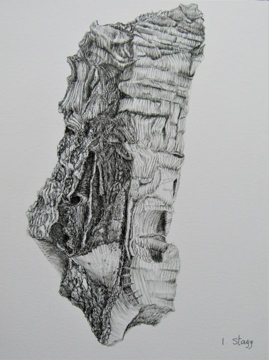 Derive de Quercus Suber II - Drawing,  12.6x9.5 in, ©2019 by Isabelle Stagg -                                                                                                                                                                                                                                                                                                                                                                                                                                                                                                                                              Illustration, illustration-600, Botanic, Culture, Nature, Tree, oak, tree bark, textures, Provence, chene liege