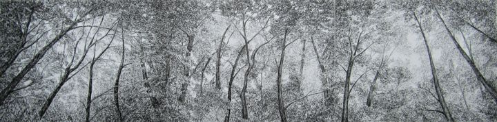 Chênes et pins II/Oaks and Pines II - Drawing,  9.5x37.8 in, ©2020 by Isabelle Stagg -                                                                                                                                                                                                                                                                                                                                                                                                                                                                                                                                                                                                                                                                                                                              Illustration, illustration-600, Black and White, Landscape, Nature, Tree, Forest, woodland, landscape, oak, trees, pines, Provence, Paysage, Bois