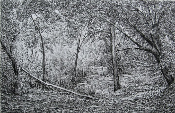 Chênes et pins III/Oaks and Pines III - Drawing,  12.4x18.9 in, ©2020 by Isabelle Stagg -                                                                                                                                                                                                                                                                                                                                                                                                                                                                                                                                                                                                                                                                                                                              Illustration, illustration-600, Black and White, Botanic, Landscape, Nature, Tree, Forest, woodland, Natural environment, trees, oaks, Pines, Provence, ink drawing