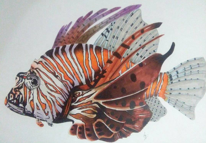 Poisson Lion - Drawing,  19.7x23.6 in ©2017 by iles guiz -                                            Realism, Animals, animaux, poisson, lion, poisson lion, mer, ocean, nature, realisme, graphisme, vie, couleur