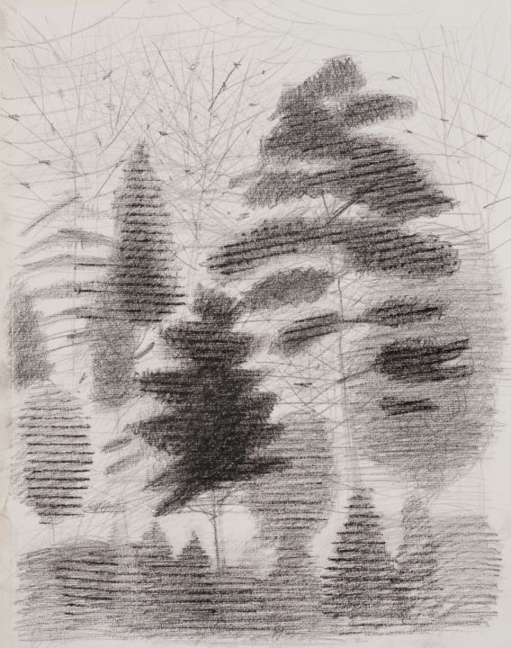 Amazing forest - Drawing ©2015 by Irena Luse -                        Paper