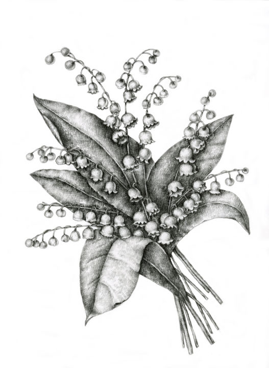 Lily of the valley irina laskin lily of the valley drawing 18x12 in 2014 by irina laskin realism izmirmasajfo Gallery
