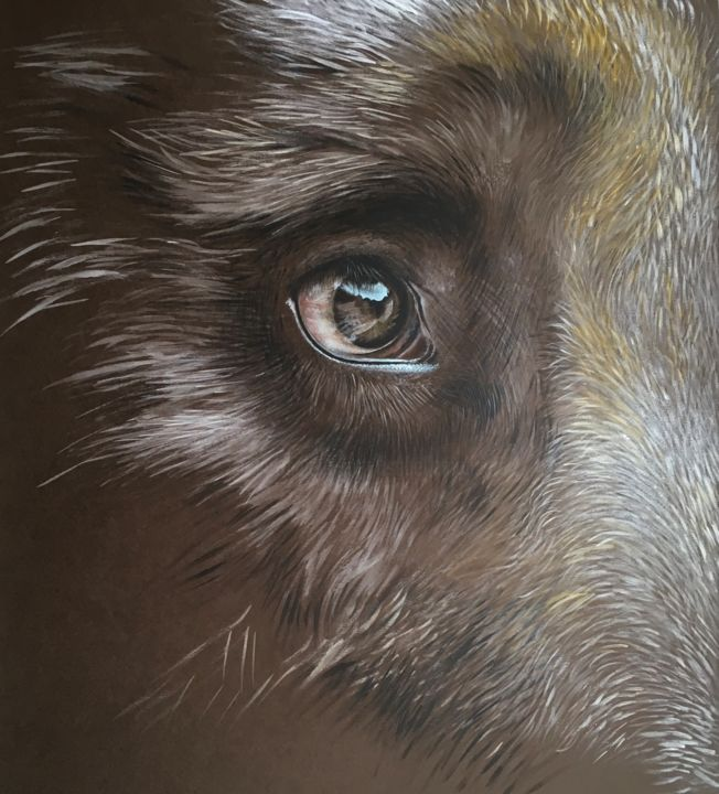 GF n 4 - Painting,  70x70 cm ©2019 by Isabelle Molinard -                                                            Figurative Art, Paper, Animals, bear's eye