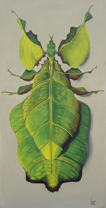 PHASME FEUILLE - Painting,  39.4x19.7x1.6 in, ©2019 by Virginie Isfaoui -                                                                                                                                                                                                                                                                                                                                                                                                                                                                              Animals, Nature, VIRGINIE ISFAOUI, illustration, peinture insecte, tableau phasme, leaf insect, ghost insect, Leaf Insect Painting, phasme feuille