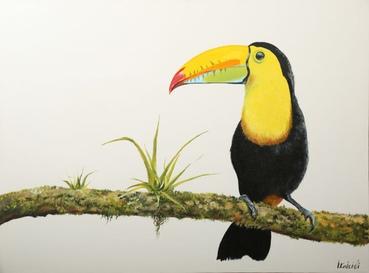 Original oil painting on canvas, Toucan - Painting,  24x32x2 in ©2019 by Isidor Kaisidi -                                                                                Realism, Contemporary painting, Photorealism, Animals, Birds, painting, parrot, bird, white, oil on canvas, color, apartment, modern style, office