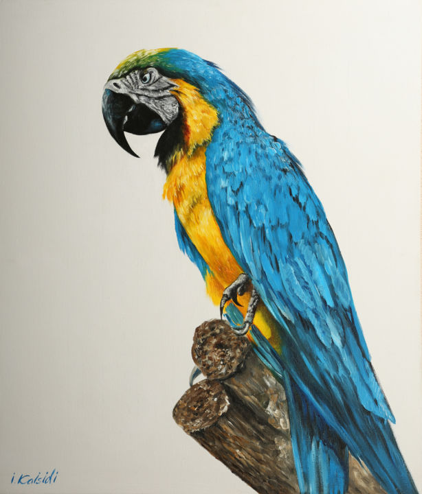 Original oil painting on canvas, Ara parrot - © 2019 Parrot, Color, Oil on canvas, Bird, Animal, Blue, Exotic animals, Painting, Modern style Online Artworks