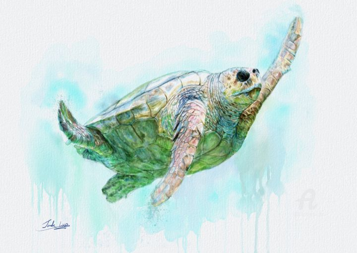 Sea turtles at the bottom of the sea - Painting,  12.5x17.7 in, ©2019 by jack luo -                                                                                                                                                                                                                                                                                                                                                                                                                                                                                                                                                                                                                                                                                  Illustration, illustration-600, Animals, Seascape, Beach, Spirituality, turtle, hawksbill, sea turtle, hawkbillturtle, Watercolor ocean, Watercolor animals, Watercolors turtles, Hand painted turtles