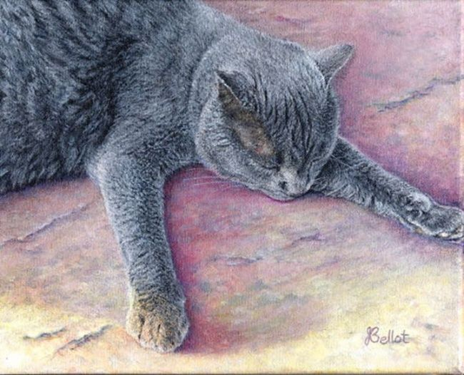 Shadow - Painting,  7.9x9.8 in, ©2006 by Jacqueline Bellot -                                                                                                                                                                          Figurative, figurative-594, chat cat gris grey dormir sleeping
