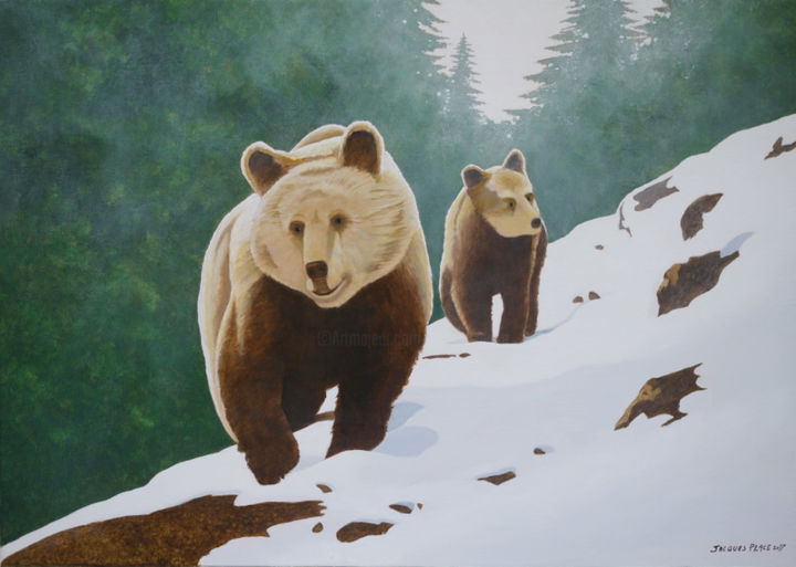 Ours - Painting,  50x70 cm ©2017 by Jacques Place -                                                            Realism, Canvas, Animals, Nature, Pyrénées, faune, Ours