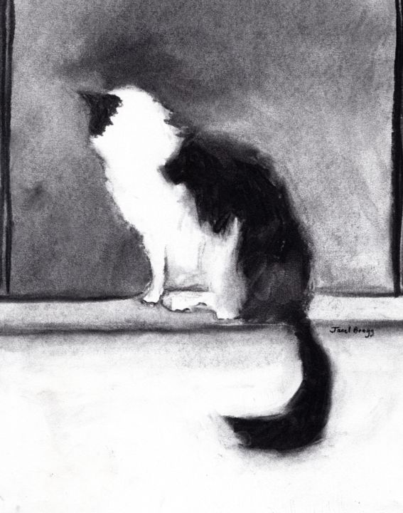 Thomas in the Window - Drawing,  13x11 in ©2019 by Janel Bragg -                                                                                Classicism, Illustration, Animals, Black and White, Cats, cat, cats, kitten, kittens, feline, pet, pets, black and white, black, white, charcoal, window, janel bragg, drawing, print, modern, art, contemporary