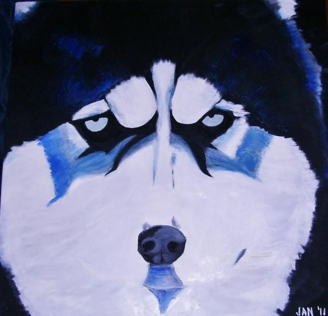 Blue Husky - Painting,  24x24x1 in, ©2011 by Jan Wall -                                                                                                                                                                                                      Dogs, dog, Husky, blue