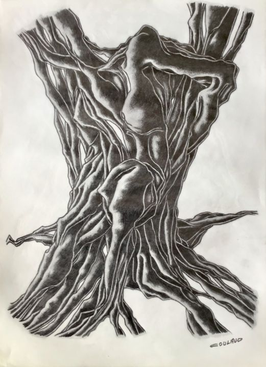 Étude arbrologique 16 - Drawing,  40.5x29.5 cm ©2000 by Jean-Luc Coulaud -                                                        Surrealism, Paper, Tree