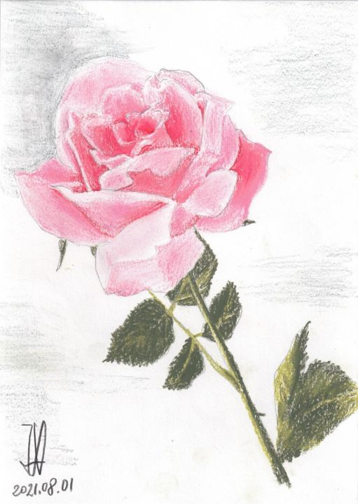 """Painting titled """"Rose rose"""" by Jean-Marc Allenbach, Original Art, Pastel"""