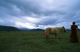 Patience - Photography, ©2006 by Jeff Fuchs -                                                              Monk Horse Relationship Patience Tibet China Landscape