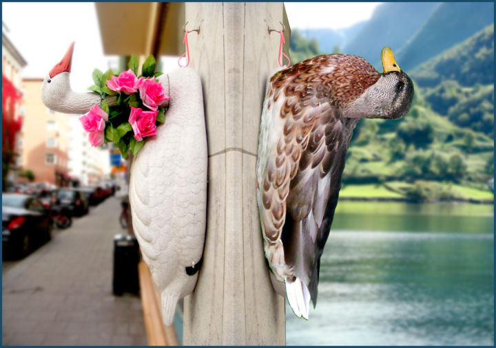 """Digital Arts titled """"Keep-Your-Ducks-In-…"""" by Jeff Key, Original Art, Photo Montage"""