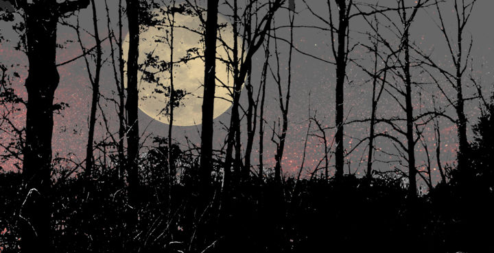 Astral Luna In The Tangle Wood - Photography ©2014 by Jim Cureton -                                                            Surrealism, Paper, Landscape, tangled-astral-woods-edited-1.jpg; moon; lunar; Photoshop