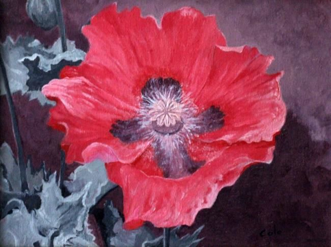Red Poppy - Painting,  9x12 in, ©2007 by Joan Cole -