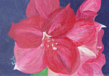 Amaryllis #1 - Painting,  5x7x0.4 in, ©2009 by Joan Cole -                                                              flowers oil painting original art red amaryllis