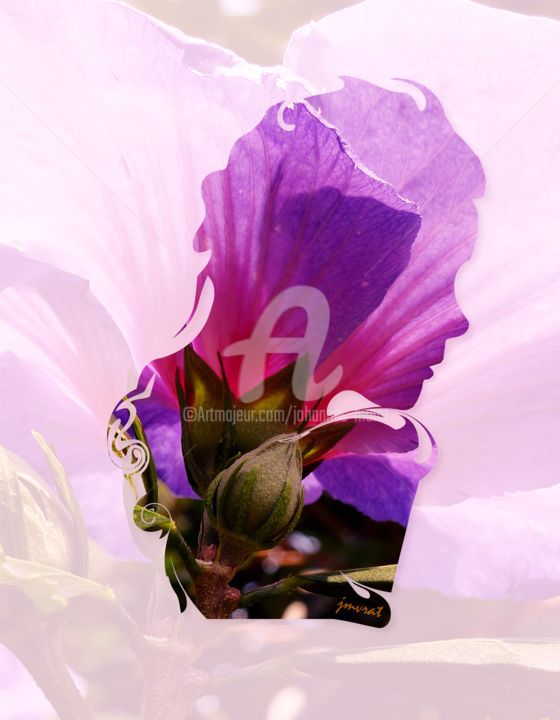 Flower Portrait  M0003 - Digital Arts,  0x0x0 cm ©2014 by Johannes Murat -                                                                                                                                Photorealism, Illustration, Impressionism, Realism, Surrealism, Flower, Erotic, Women, Fantasy, flower, love, portrait, fantastic, romantic, gift, birthday, murat, johannes, photo, woman, excelent, superb, fine living, art, fine art, erotic, surreal, dali, monaco, paris, milano, rome, decor