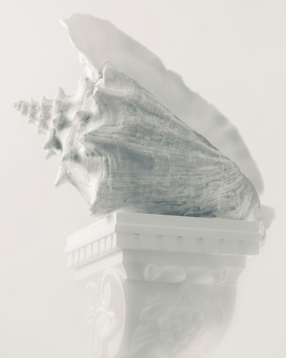 """Photography titled """"Conch on Pedestal"""" by John Manno, Original Art, Digital Photography"""