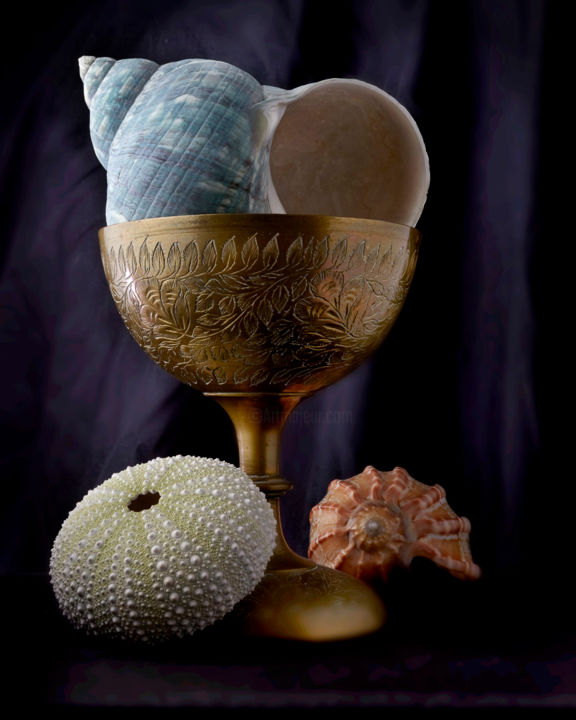 """Photography titled """"Chalice with Seashe…"""" by John Manno, Original Art, Digital Photography"""