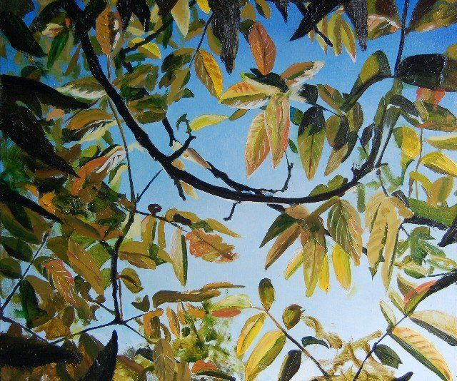 """The Leaves and branches of the Walnut Tree SOLD - Painting,  17.7x21.7 in, ©2011 by Jon Phillipson Brown -                                                              jon phillipson brown """"jon phillipson brown"""" """"jon phillipson"""" Jon Phillipson Brown """"Jon Phillipson Brown"""" """"Jon Phillipson"""" john John """"John Phillipson Brown"""" """"john phillipson brown"""" """"painting by Jon Phillipson Brown"""" philipson Philipson """"jon philipson"""