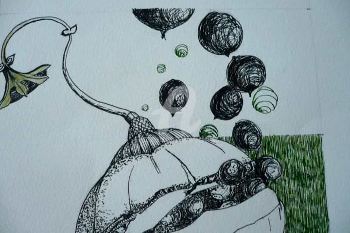 graine d'août - Drawing, ©2013 by Josiane Chauvin -                                                                                                              Black and White, dessin