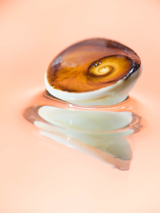 reflets-689 - Photography, ©2018 by Josy MODERNE -                                                                                                                                                                                                                                                                                                                                                                                                                                                                                                                                                                                                                                                                                                                                                                                                                      Abstract, abstract-570, Abstract Art, Colors, Water, Light, Nature, macro, photo, coquillage, couleur, color, eau, water, reflection, shell, Limited Edition
