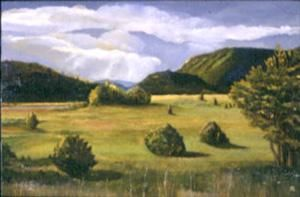 """Painting titled """"Falls Creek"""" by Judith D'Agostino, Original Art, Oil"""