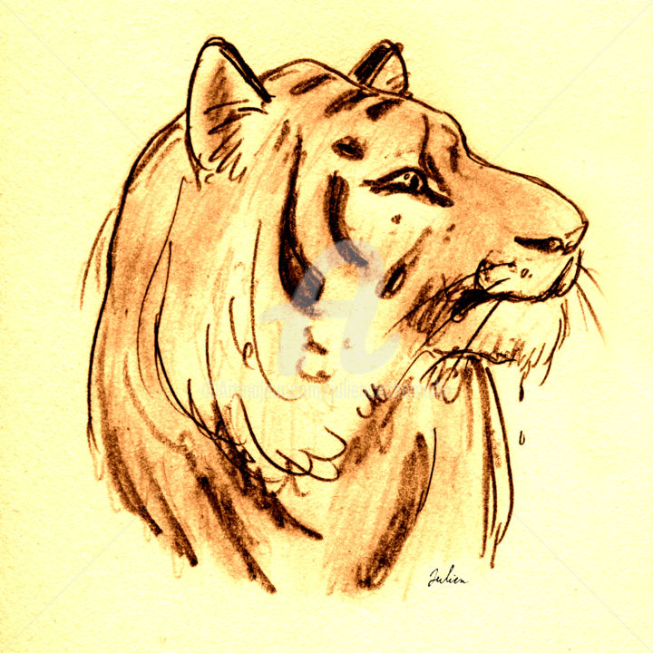 Tigre - Dessin,  8,3x8,3 in, ©2020 par Julien Cachemaille -                                                                                                                                                                                                                                                                                                                                                                                                                                                                                                                                                                                                                                                                                                                              Illustration, illustration-600, Animaux, Asie, Couleurs, Nature, Portraits, tiger, tigre, yellow, fauve, Shere Khan, jungle, animal, félin