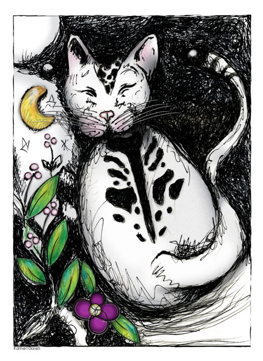 Chat de Dos - Drawing,  8.3x5.9 in, ©2010 by Karine Garelli -                                                                                                              Black and White, chat