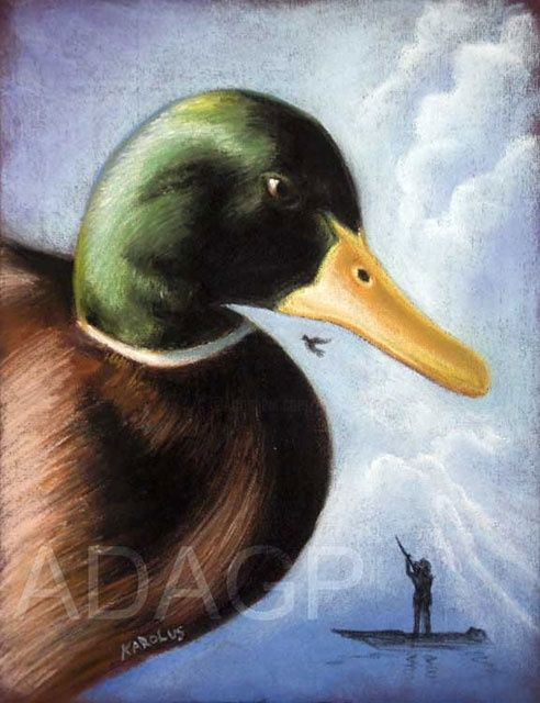 Un si joli canard* - Painting,  15.8x11.8 in, ©2011 by Karolus -                                                                                                                                                                                                                                                                                                                                                                                                          Illustration, illustration-600, Rural life, Nature, Birds, Canard, chasseur, rapace