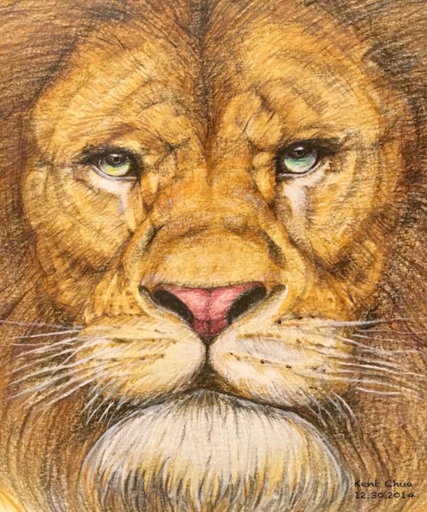 """Drawing titled """"The Regal Lion"""" by Kent Chua, Original Art, Other"""