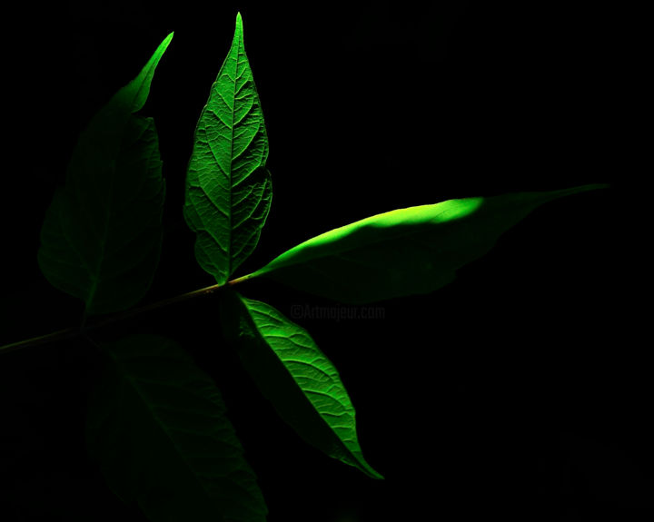 """Photography titled """"found-light-as-10x8…"""" by Kevin W Beer, Original Art,"""