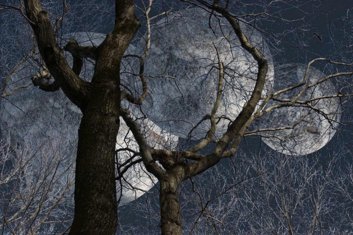 The Season of the Frost Moons - ©  the-season-of-the-frost-moons.jpg; manipulated; lunar; moons; Photoshop Online Artworks