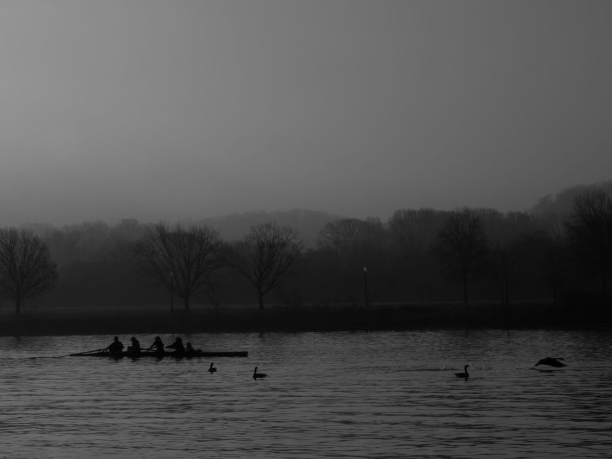Sharing the Anacostia - Photography ©2015 by Chantale Wong -