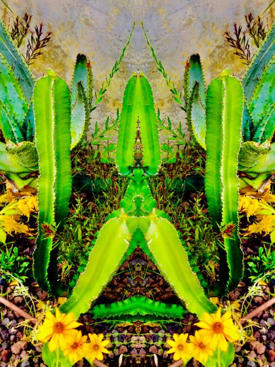 Arizona Dream - Photography ©2018 by Kirlian -                                                                                                                    Figurative Art, Naive Art, Documentary, Surrealism, Tree, Colors, Garden, Light, Cactus, Végetal, Végétation, Désert, Symbolisme