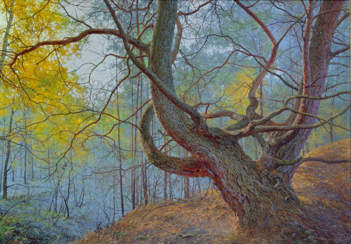 Forest Painting, oil, figurative, artwork by Юрий Клапоух