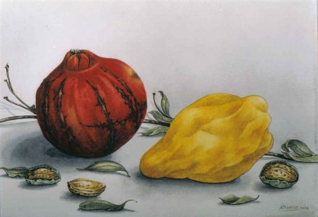 pomagranates 13 - Painting,  30x40 cm ©2006 by Thomai Kontou -            pomegranates, magicrealism aquarelle