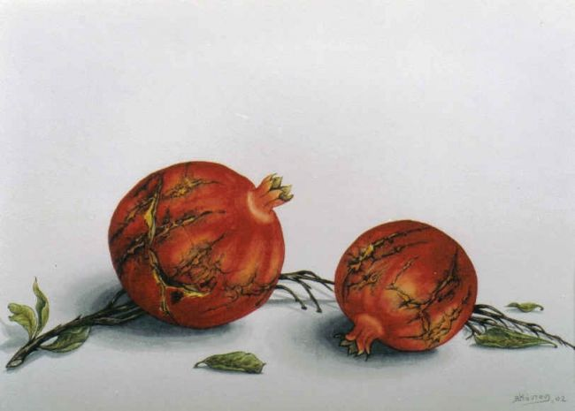 pomagranates 14 - Painting,  30x40 cm ©2006 by Thomai Kontou -            pomegranates, magicrealism aquarelle